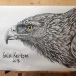 орел на заказ карандашом