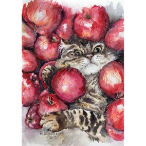 Кот и яблоки