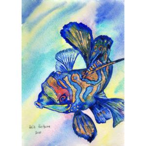 Цветная рыбка акварель