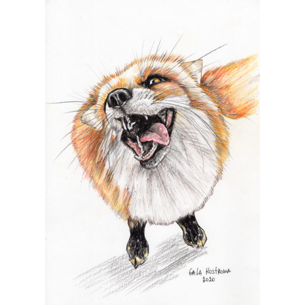 Веселая лисичка - картина на заказ