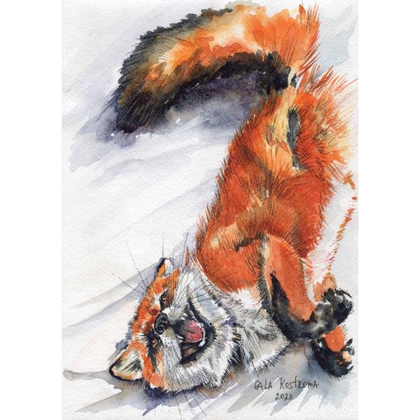 Смешная лисичка