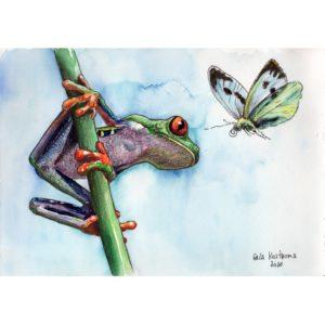 Лягушонок и бабочка
