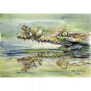 Лягушонок и крокодил